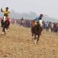নবীগঞ্জে ঐতিহ্যবাহী ঘোড় দৌড় প্রতিযোগিতা