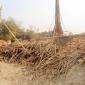 শৈলকুপায় ইটভাটায় পুড়ছে হাজার হাজার মন কাঠ