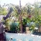 রাউজানে ছাদ-বাগানে সবুজের হাতছানি