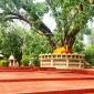 বর্ষবরণে ঐতিহাসিক মহামুনি বৌদ্ধ মন্দির প্রাঙ্গনে উৎসবের আমেজ