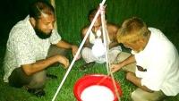 আত্রাইয়ে আলোক ফাঁদ পদ্ধতি কমছে কীটনাশক ব্যবহার