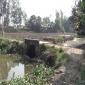 সিরাজগঞ্জের তাড়াশে টিআর-কাবিখা প্রকল্পে হরিলুট