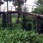 মোরেলগঞ্জে ৩ গ্রামের মানুষের ভরসা ঝুঁকিপূর্ণ  ভাঙ্গা পুল : জনদুর্ভোগ