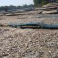 দেশি মাছে পরিপূর্ণ আত্রাই নদী পাড়ের শুঁটকি পল্লী