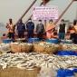 মুন্সিগঞ্জে কোস্ট গার্ডের অভিযানে যাত্রিবাহী লঞ্চ থেকে বিপুল পরিমান জাটকা জব্দ